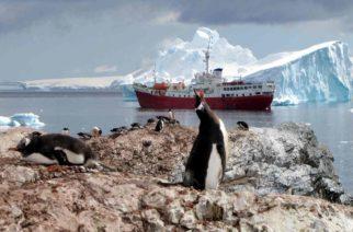 El hielo marino de la Antártida se reduce a la menor extensión posible