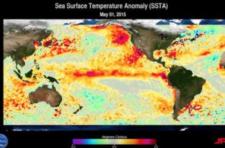 Organización de la Meteorología Mundial alerta sobre El Niño en 2017